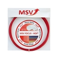 MSV Focus HEX �