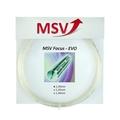 MSV Focus EVO