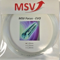 Image MSV Focus EVO Older Packaging