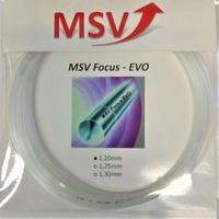 Image MSV Focus EVO Older Packaging