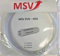 Image MSV EVO-Hex older packaging