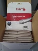 Image MSV Co Focus 1.27mm Black 12 sets
