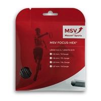 Image MSV Focus HEX ™